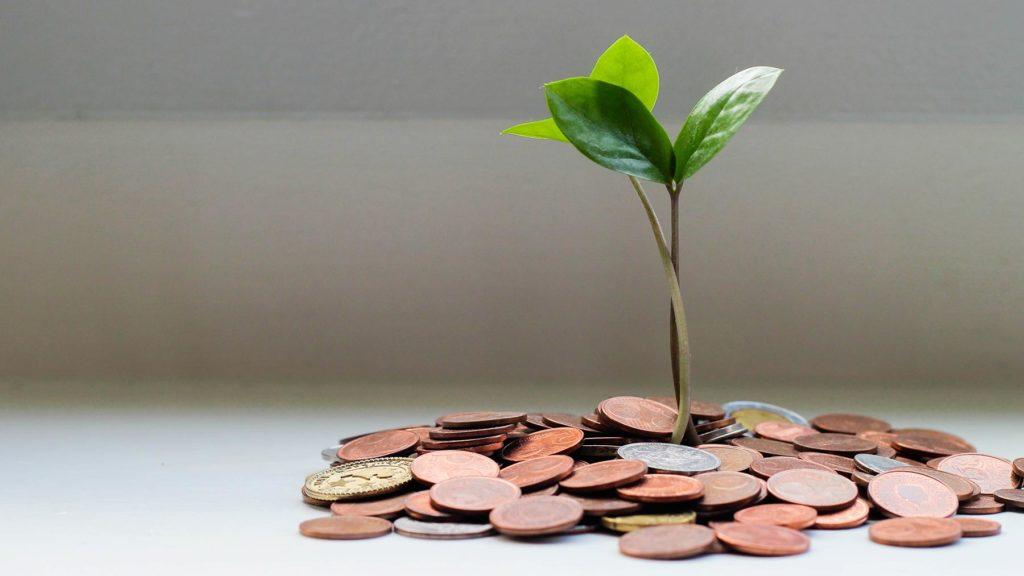 Pengar och en grön växt