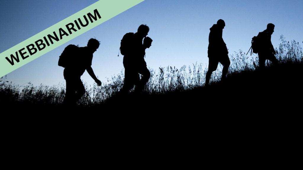 webbinarium-sja%cc%88lvga%cc%8aende-team
