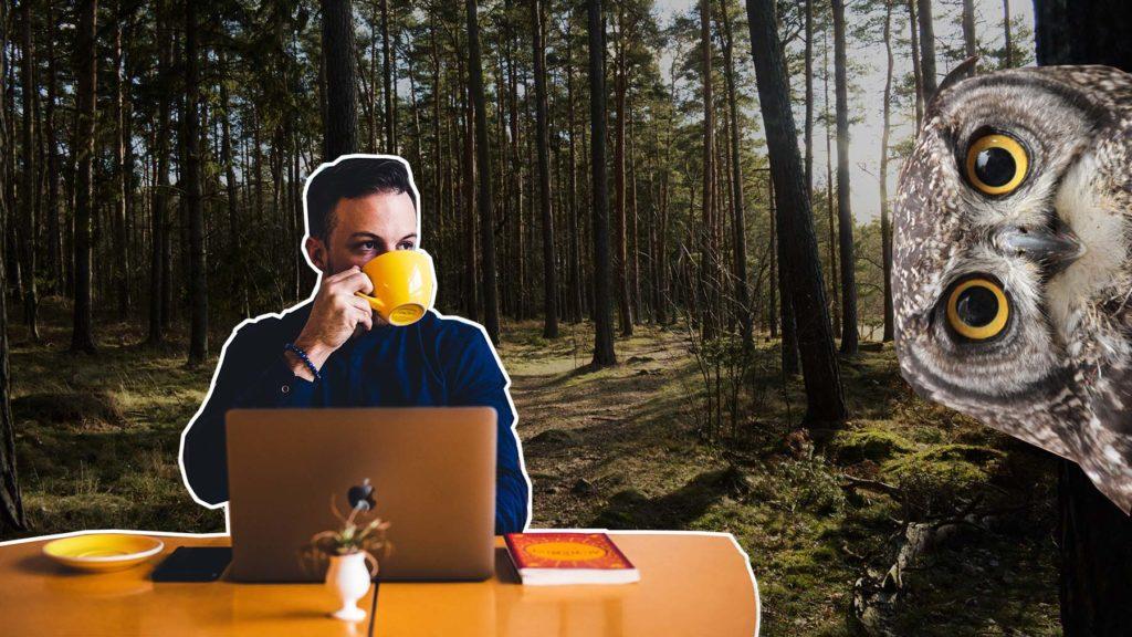 Att jobba utomhus i 20 minuter sänker stressnivåerna med 10 procent.