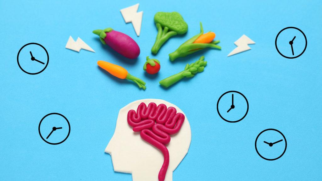 Illustration med hjärna, grönsaker och klockor