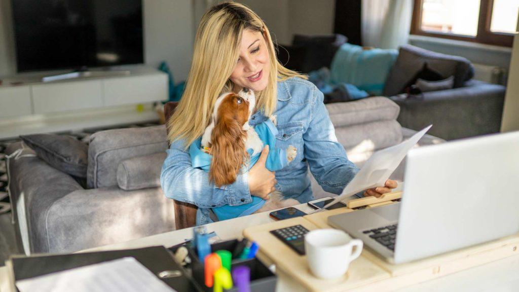 En kvinna sitter och arbetar framför en dator i sitt hem. Hon blir avbruten av en hund som hoppar upp i hennes knä.